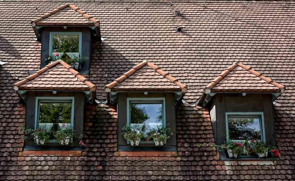 Window Decors