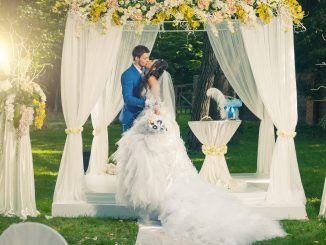 Couple after their garden wedding ceremony