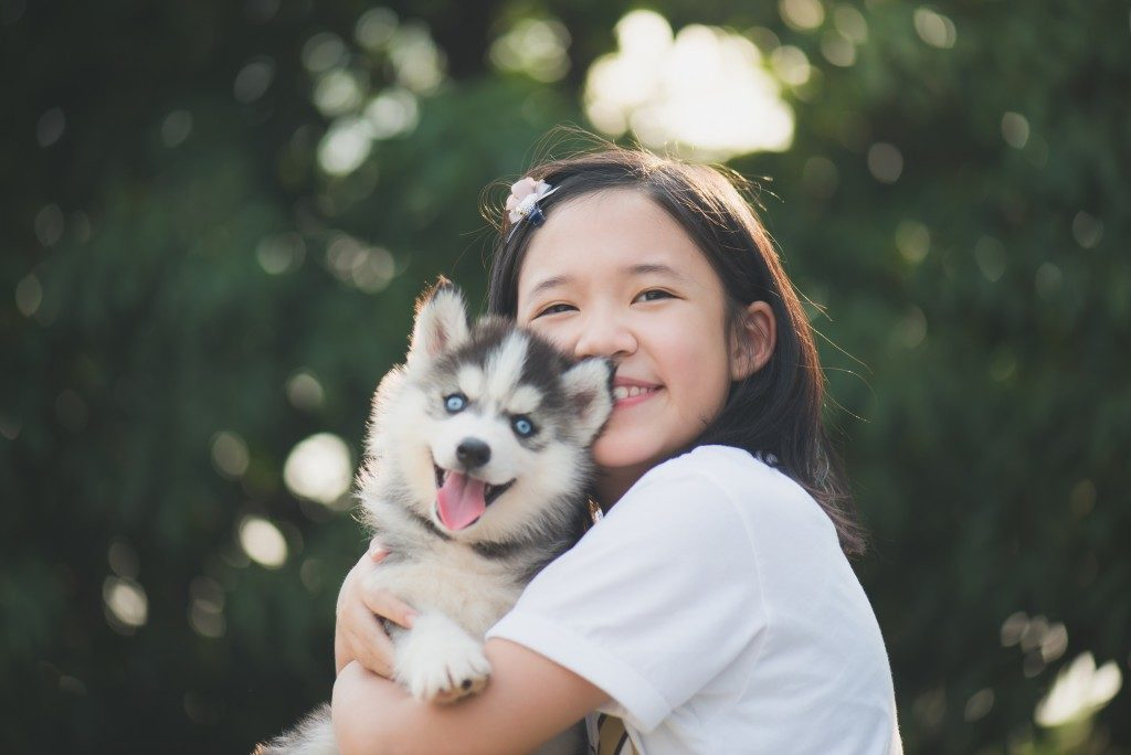 Young girl hugging her pet siberian husky puppy