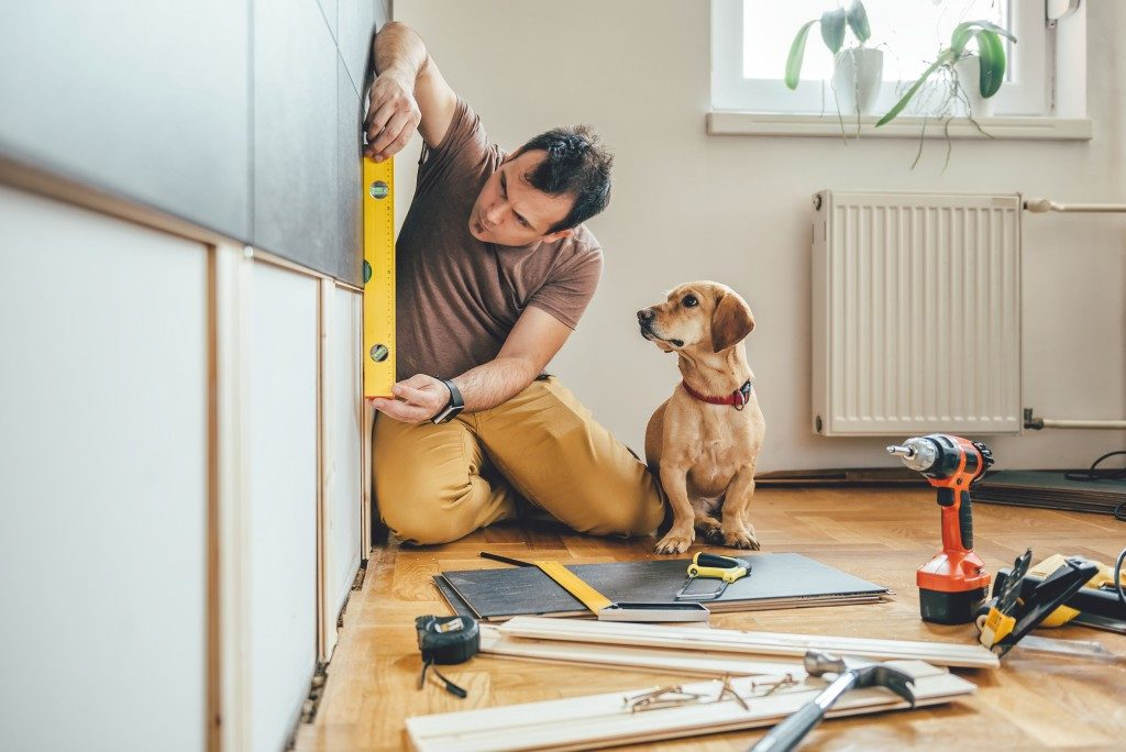 Man doing a renovation with his dog beside him